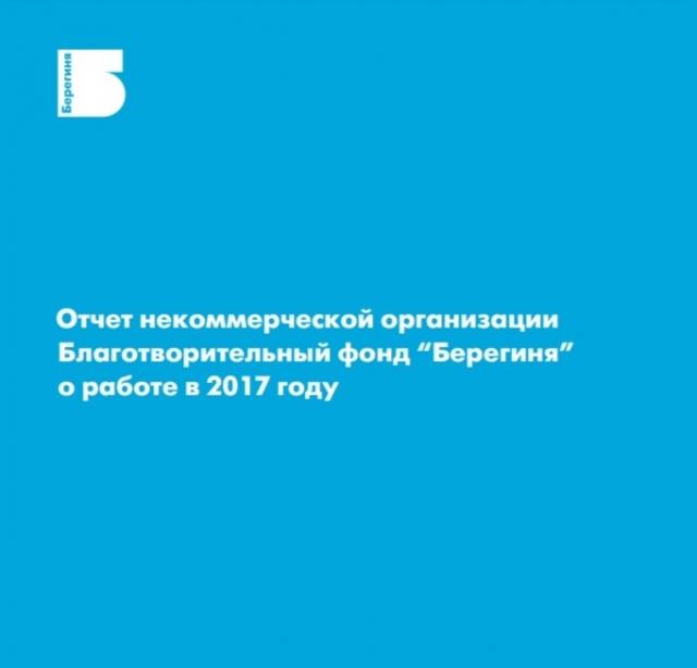 Публичный годовой отчет за 2017 год