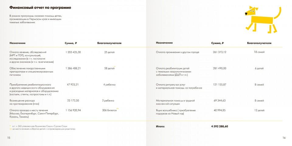 Публичный годовой отчет за 2018 год